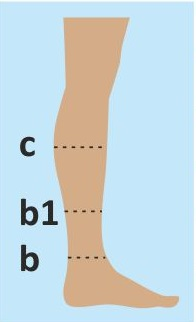 chema do kolena